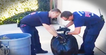 These Firefighters Went Above The Call Of Duty When They Performed THIS Act Of Kindness