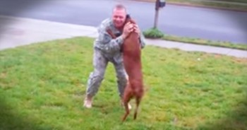 Soldier Returns From Deployment And Has Emotional Reunion With Dog