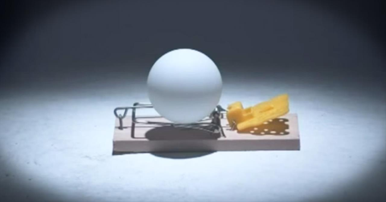 Mind-Blowing Chain Reaction Caused By Mousetraps And Ping-Pong Balls