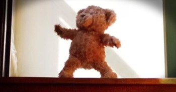 Excited Teddy Bear Gets Ready For New Baby