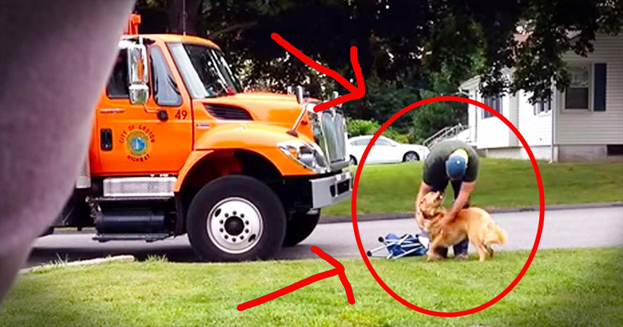 Garbage Man And Golden Retriever Will Make Your Smile With Unlikely Friendship