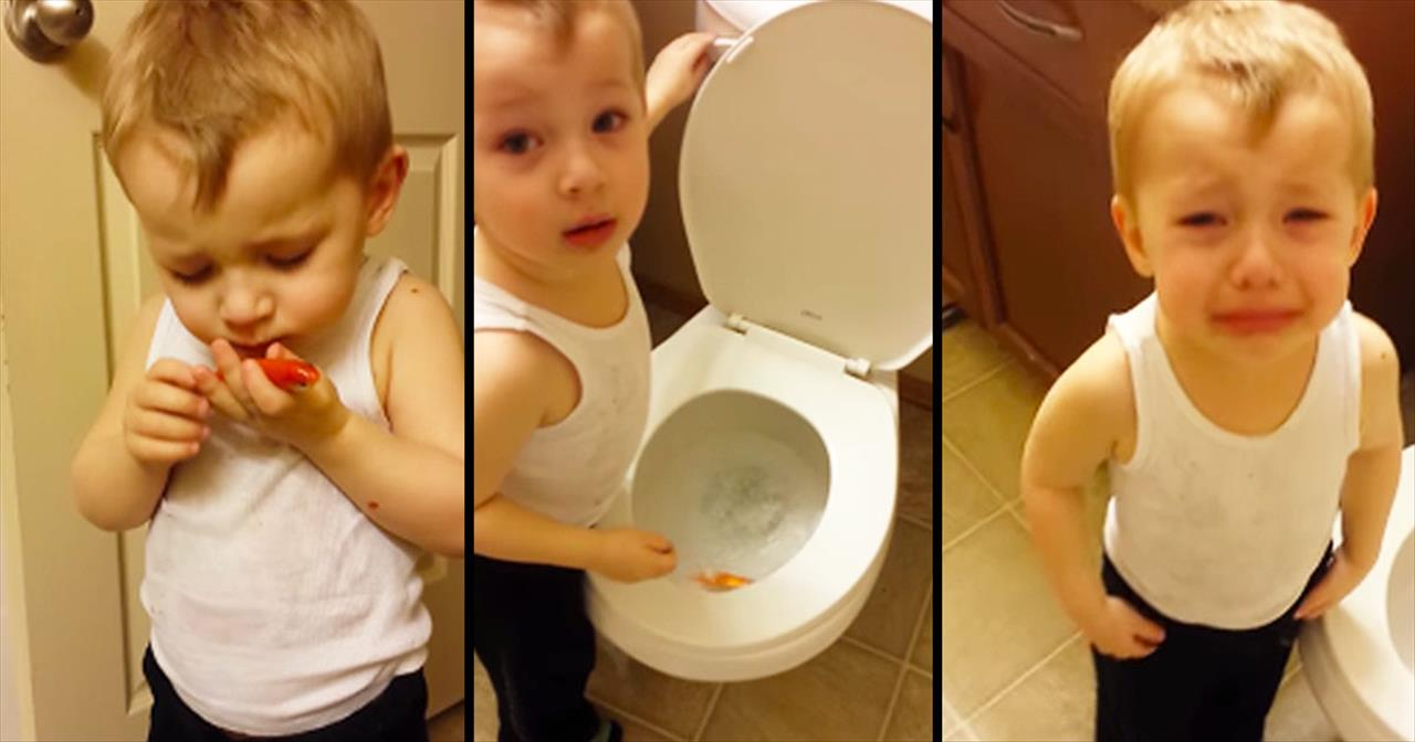 Boy Holds Tearful Funeral For Pet Fish