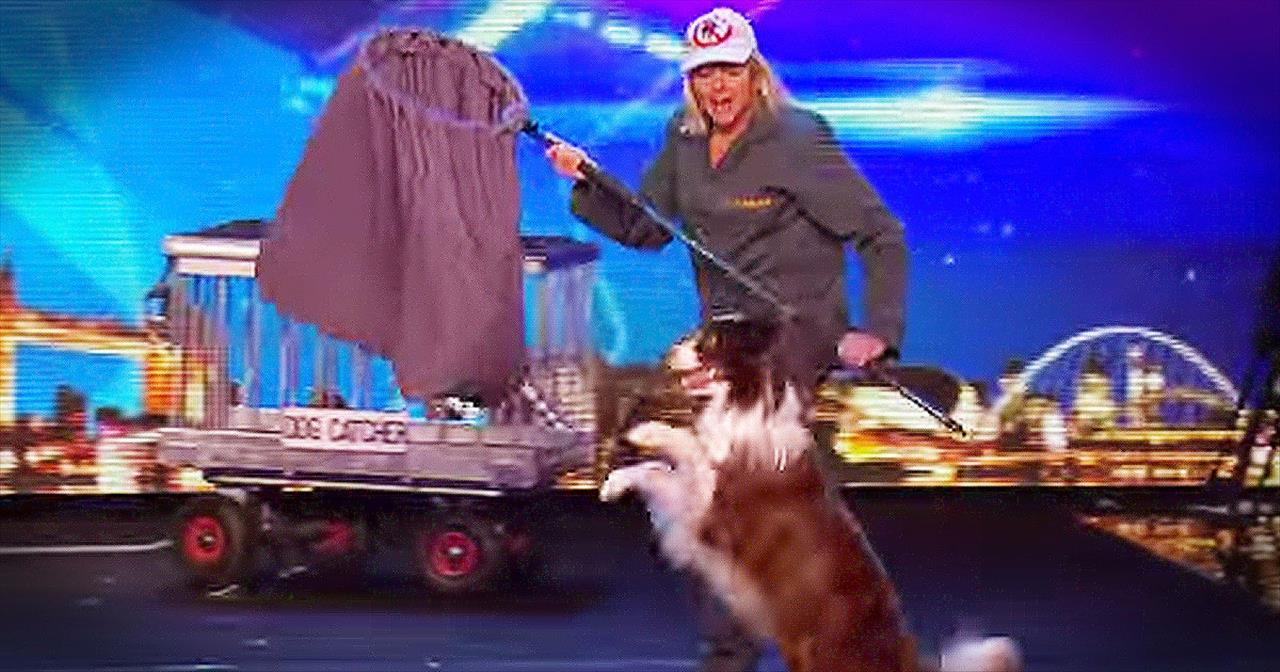 Talented Dog And Trainer Seriously Impress The Judges With Hilarious Routine