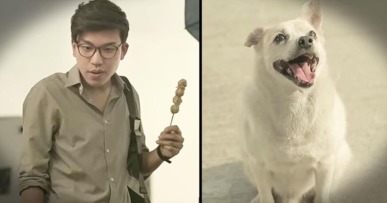 Stray Dog Gives Back To Man Who Fed Him