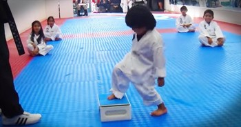 Tiny Taekwondo Master Hilariously Breaks Board