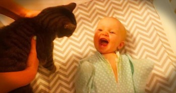 Baby Is SO Excited When Cat Visits The Nursery