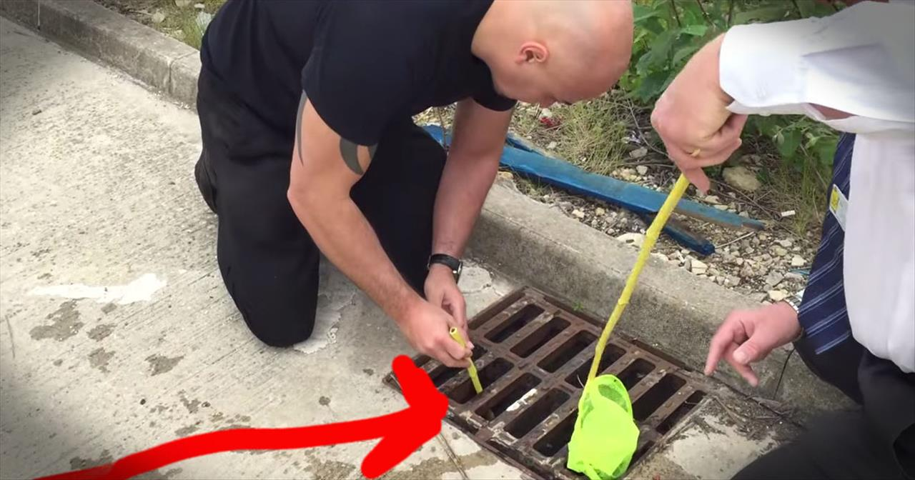 Ducklings Stuck In Storm Drain Get Amazing Rescue