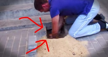 Rescuers Discover Dog Trapped Underneath Bricks