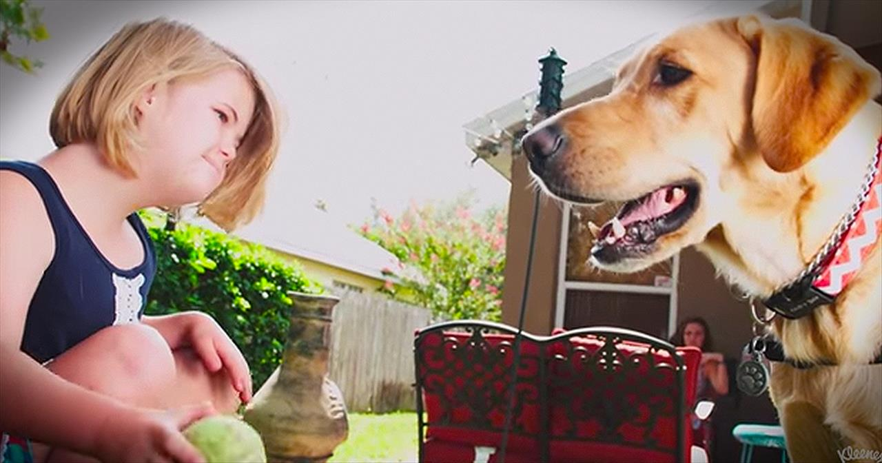 Forget Diamonds...This 4-Legged Guy Is A Girl's Best Friend!
