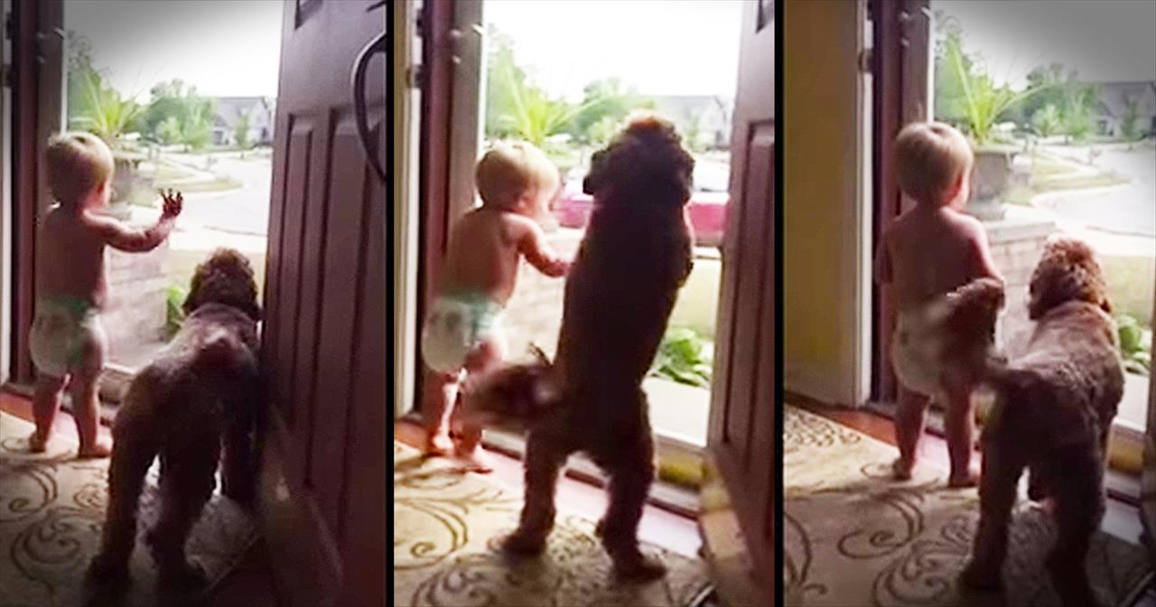 Baby And Pup Do The CUTEST Dance When Daddy Comes Home