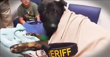 Police Officers Give Hero German Shepherd An Emotional Goodbye