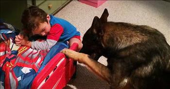 German Shepherd And Tiny Human Pray Before Bed