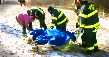 Horse's Dramatic Ice Rescue Is True Kindness