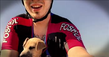 Biker Rescues Abandoned Puppy In Box