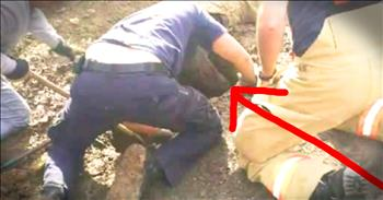 Dog Rescued After 3 Days In Sinkhole Will Break Your Heart