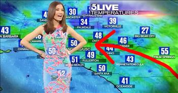 Meteorologist's Dress Creates Hilarious Green Screen View!