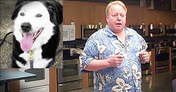 Shelter Dog Saves Obese Man On The Brink Of Death