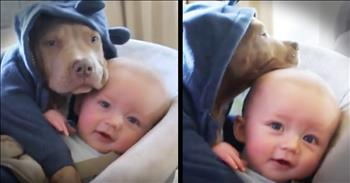 Baby And Puppy Cuddle Session Is The Cutest!