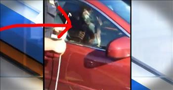 Stranger Saves Elderly Dog Trapped In Hot Car