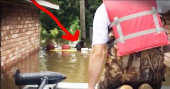 Rescuers Travel The Streets After A Horrific Flood Saving Stranded Dogs