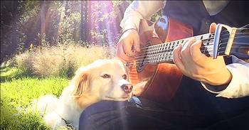 Man And Dog Play Acoustic Rendition Of Gene Wilder's 'Pure Imagination'