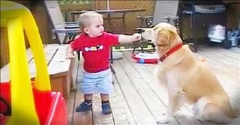 Sweet Baby Boy Shares His Snack With A Blind Dog