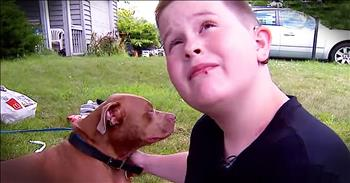 Hero Pit Bull Saves Family From House Fire
