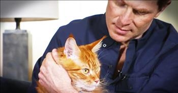 Famous Chef Explains Why Cats Deserve Love Too