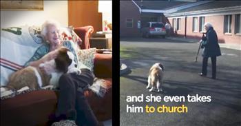 Widow Gets A Puppy Best Friend