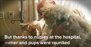 Man Reunited With Dogs After Tornado
