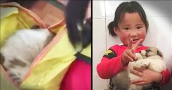 Kindergartener Hides Stray Puppy In Backpack