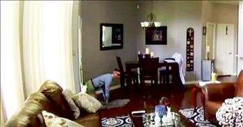 Doggy Door Could Make You Vulnerable To Robbers
