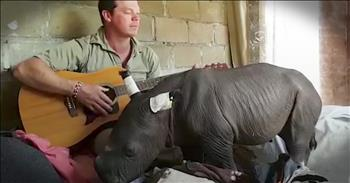 Caretaker Sings Lullaby To Baby Rhino
