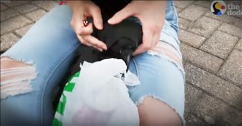Girl Helps Rescue Hurt Bird