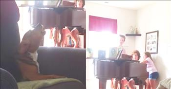 Dog Joins In On Hymn During Piano Practice