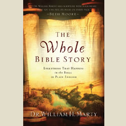 Book Spotlight: The Whole Bible Story