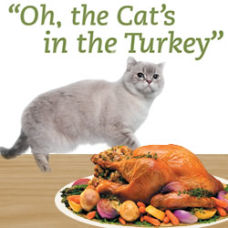 """Oh, the Cat's in the Turkey"""