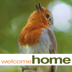 Welcome Home: Return of the Song