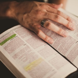 Bible Reading Plans for a New Year