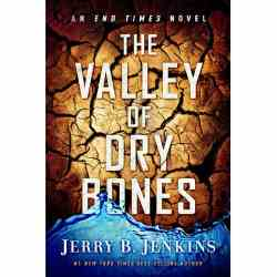 "Homecoming Insider Giveaway - Jerry B. Jenkins' ""The Valley of the Dry Bones"""