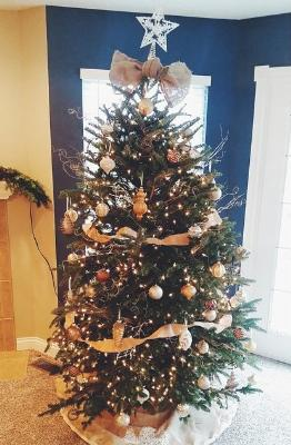 Beautiful trees decorated by Courtney Collingsworth Metz…