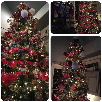Wes shares pics of his beautiful tree…