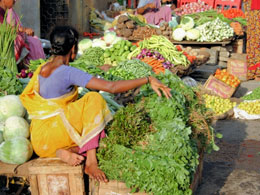 Tamil photo