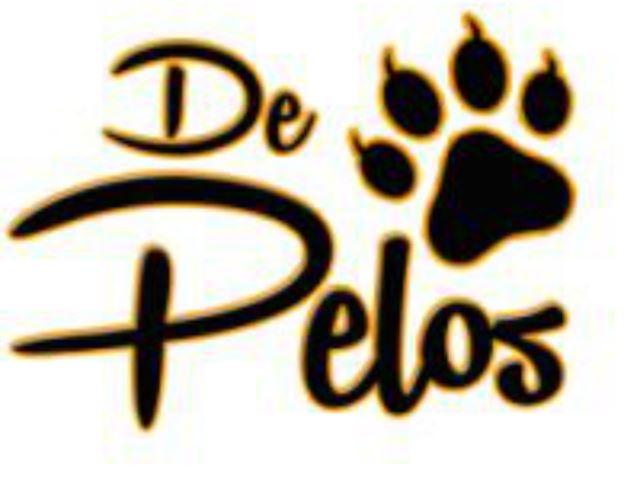 De Pelos with Gatoño y Anny